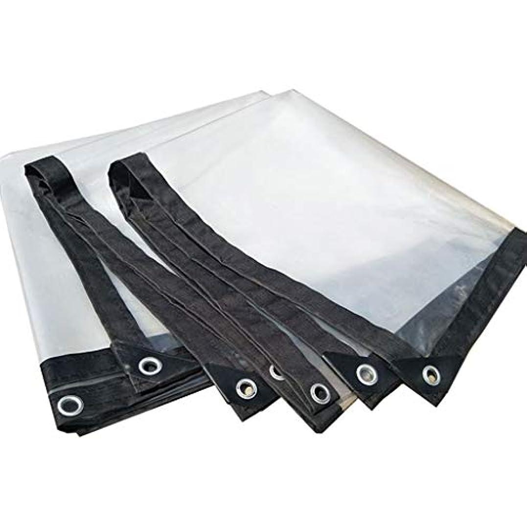 ありふれたなぜ気づくなるテントオーニング透明ターポリン厚みのあるエッジの穴あき防水プラスチックシート窓バルコニーフラワークロップ温室フィルム (Size : 3X4m)