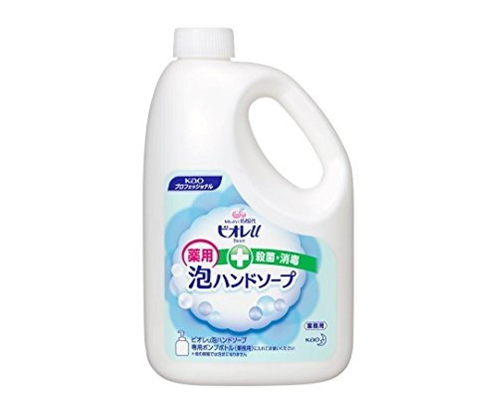 生産性精査安心ビオレU泡ハンドソープ No.168616(2L)