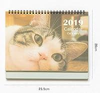 Somnus258 大きいサイズ かわいい 2019 猪年 カレンダー 卓上 猪 猫 好き 中国 カレンダー 贈り物