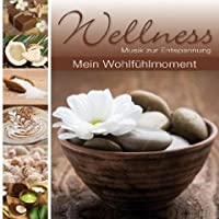 Wellness-mein Wohlfuehlmo