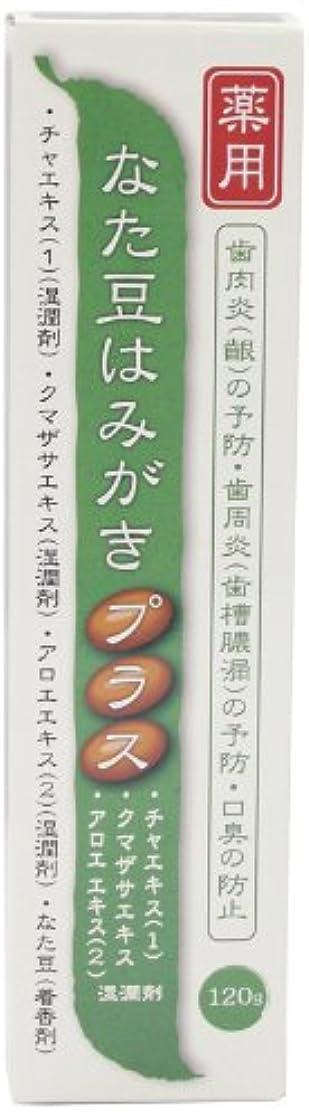 メンター拒絶する定期的にプラセス製薬 薬用なた豆はみがきプラス 120g