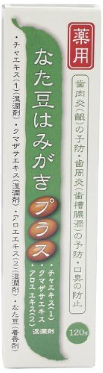 通貨一回書道プラセス製薬 薬用なた豆はみがきプラス 120g