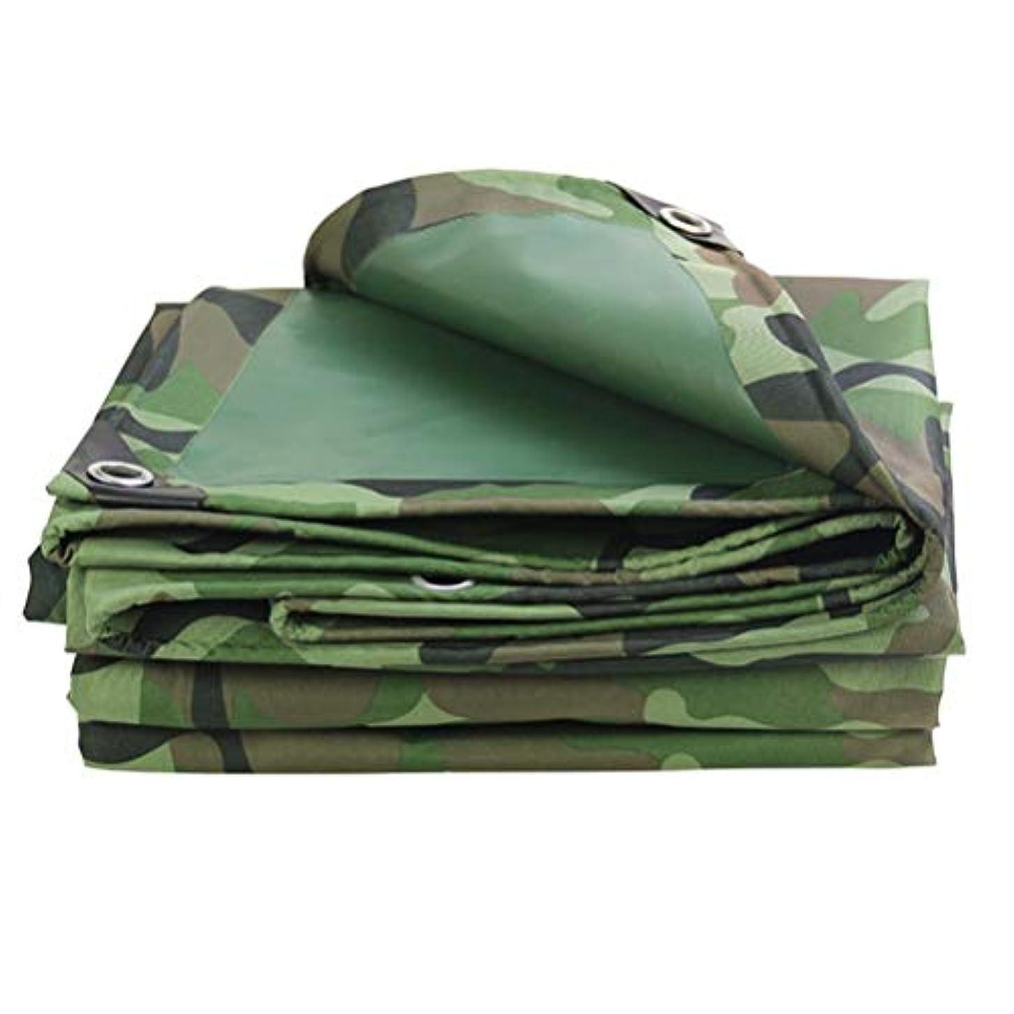 退院準備準備防水シートリノリウム 頑丈な防水ChaoJin厚い多目的ボートのキャンプテントカバー防水シート多防水シート ZHANGQIANG (Color : A, Size : 3x6m)