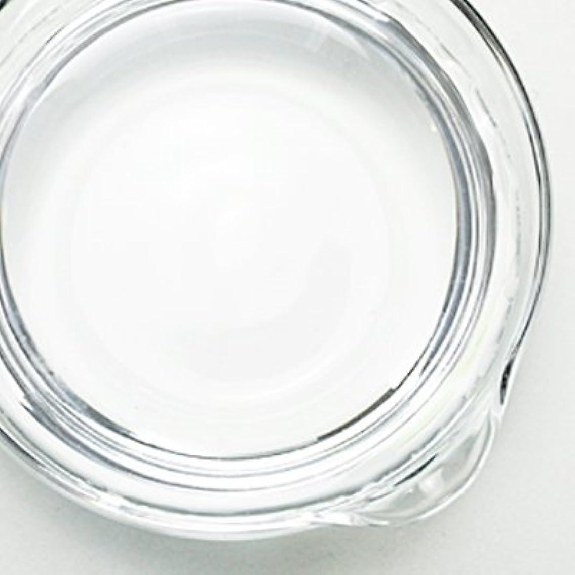 でもオンス医療過誤1,3-ブチレングリコール[BG] 250ml 【手作り石鹸/手作りコスメ】