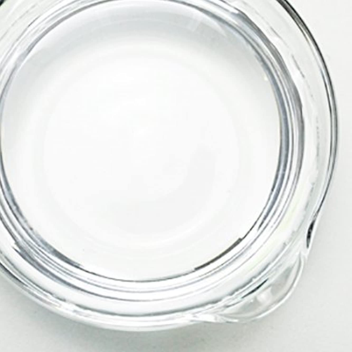 風刺トライアスリート不健康1,3-ブチレングリコール[BG] 100ml 【手作り石鹸/手作りコスメ】