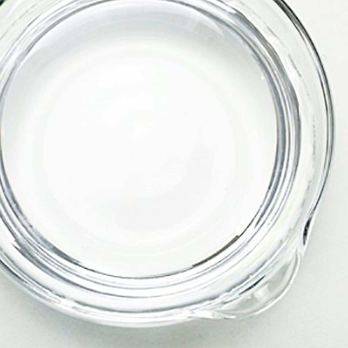 ツール専門用語風変わりな1,3-ブチレングリコール[BG] 500ml 【手作り石鹸/手作りコスメ】
