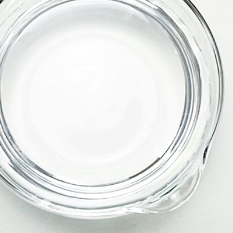 経済的斧自分1,3-プロパンジオール[PG] 100ml 【手作り石鹸/手作りコスメ】