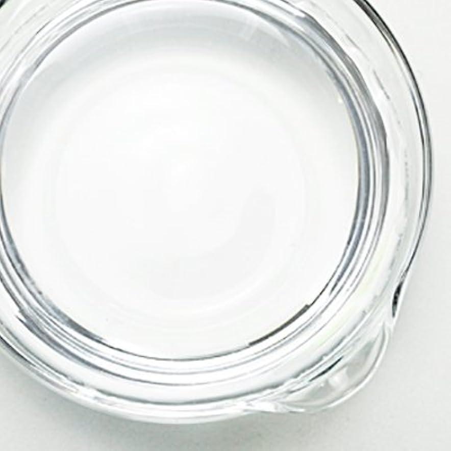 腸ごみ委任1,3-ブチレングリコール[BG] 250ml 【手作り石鹸/手作りコスメ】