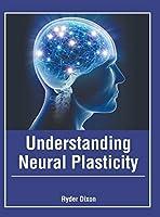 Understanding Neural Plasticity