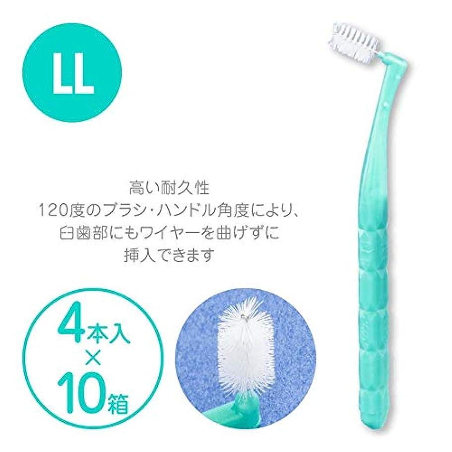 背骨謝罪するカウンタプロスペック 歯間ブラシ アングルアクア 4本入 × 10パックセット LL アクアグリーン