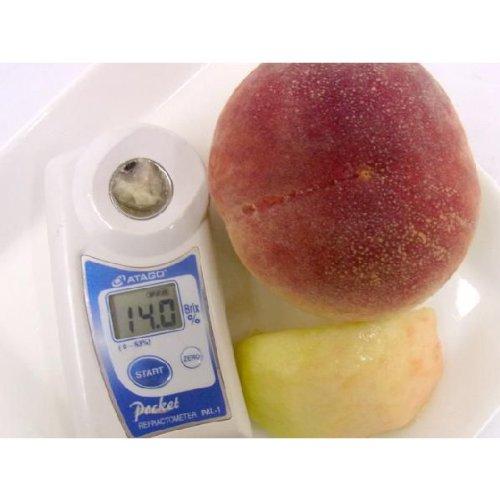 """山梨県 最高峰桃 """"大糖領"""" 超大玉4個入り 約1.5kg 糖度13度以上!ハズレなし!"""