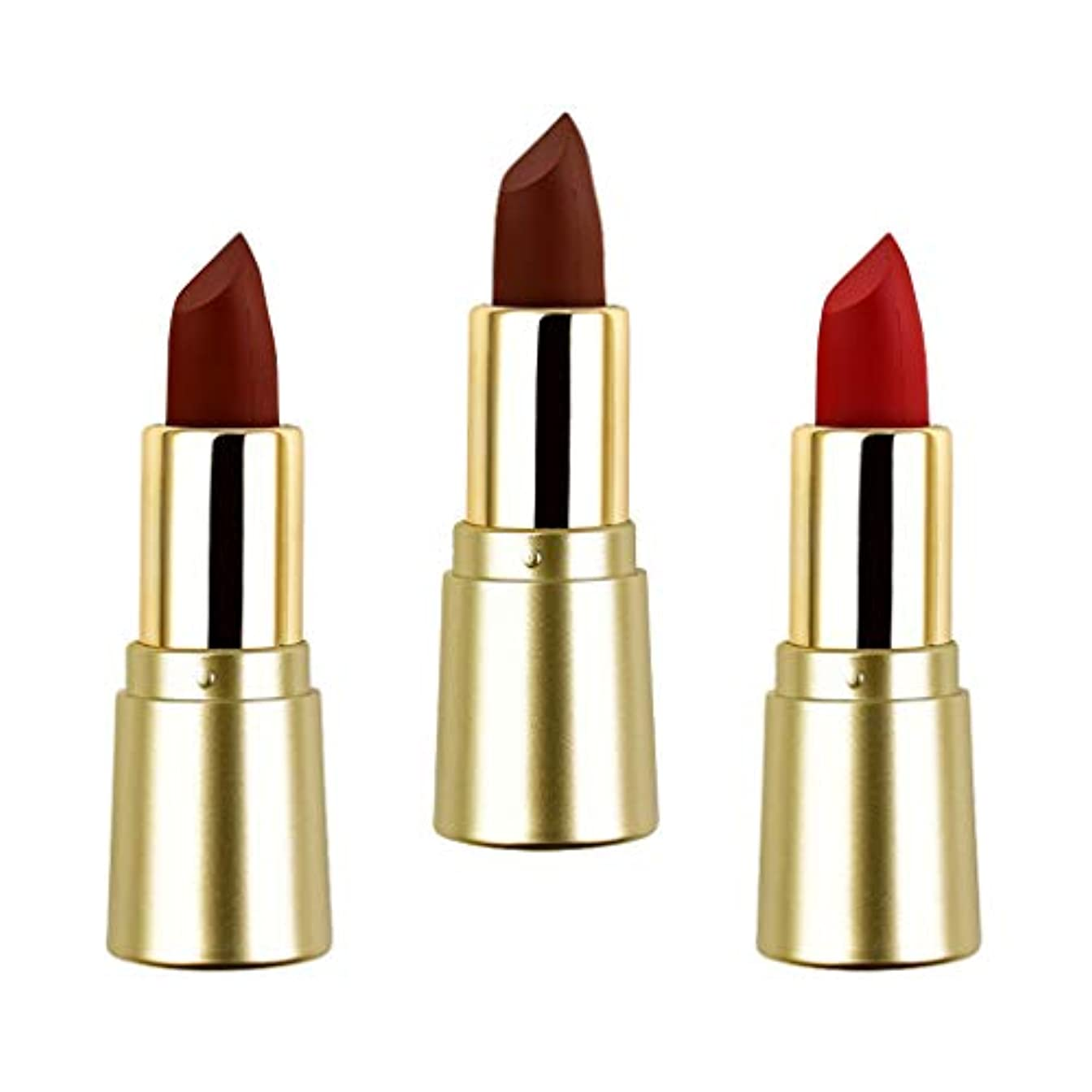 落胆した順応性のある制限Perfeclan 3色セット リップ スティック ミニマット 口紅セット リップメイク 化粧品 防水 着やすい 長持ち