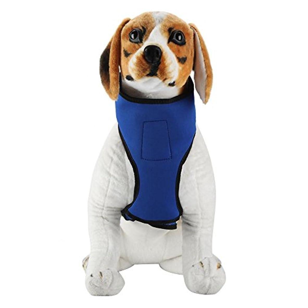 ギャングスター固有のスペース犬用 ハーネス 首輪 犬用ネックレス ひんやり首輪 冷却ネックレス 涼しい 犬の襟 クーラー ステッカー調節可能 着脱簡単 小型犬 中型犬 大型犬 柴犬 秋田犬に向け