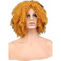 Dagly(TM) レディースキンキーカーリーアフロホイッグ党ゴールドブロンドロング黒人女性のための人工毛ウィッグ、ストレッチ長さ20インチ