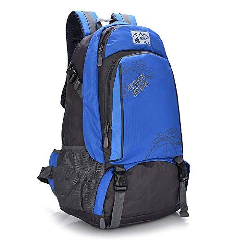 鬼ごっこ洪水不名誉軽量45Lトレッキングリュックサックキャンプハイキングアウトドアバックパックアドベンチャーキャンプハイキング登山旅行バックパッキング (Color : Blue, Size : 45L)