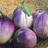 [イタリアの伝統的な茄子 野菜タネ]ナス:ロッサ ビアンコの種 2袋セット[春まき] ノーブランド品