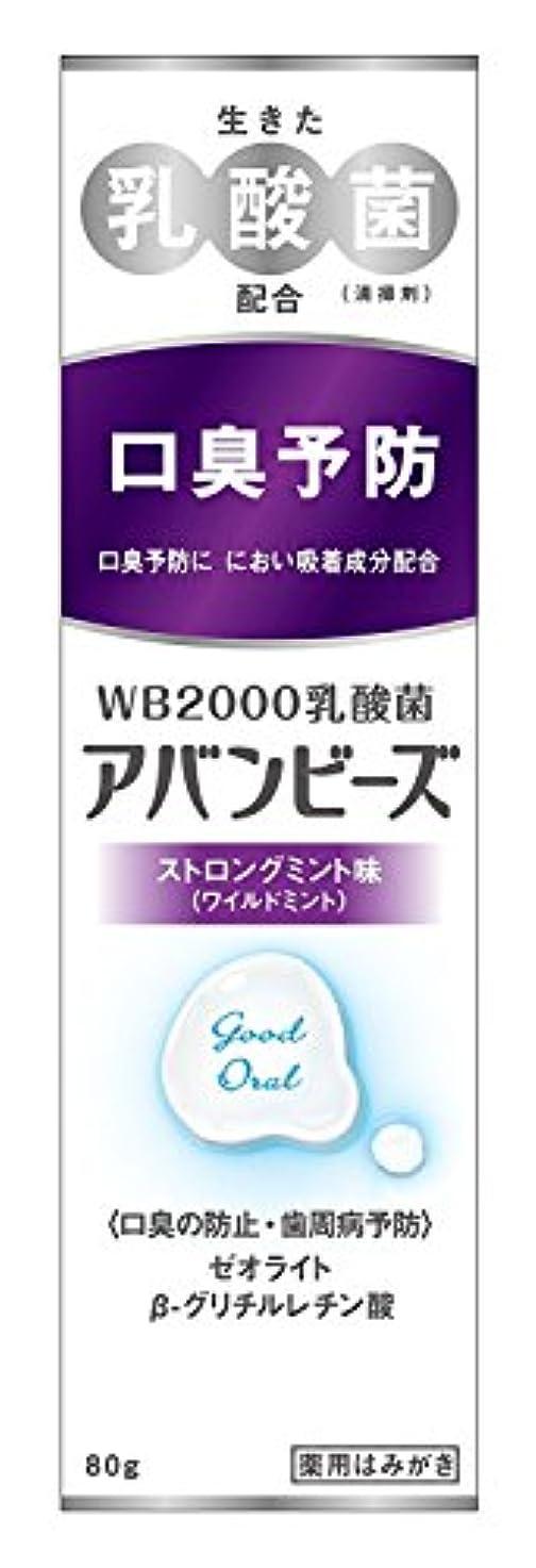 磁気対抗習熟度わかもと製薬 アバンビーズ ストロングミント味 80g