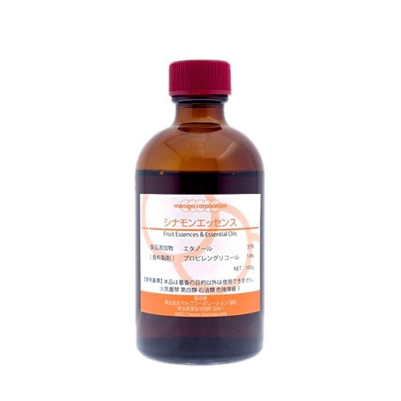 ツール代名詞スローシナモンエッセンス 食品香料 (100g)