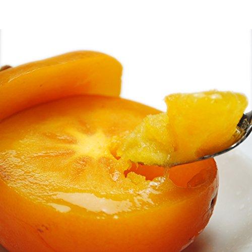 まるごと柿シャーベット 約4kg前後