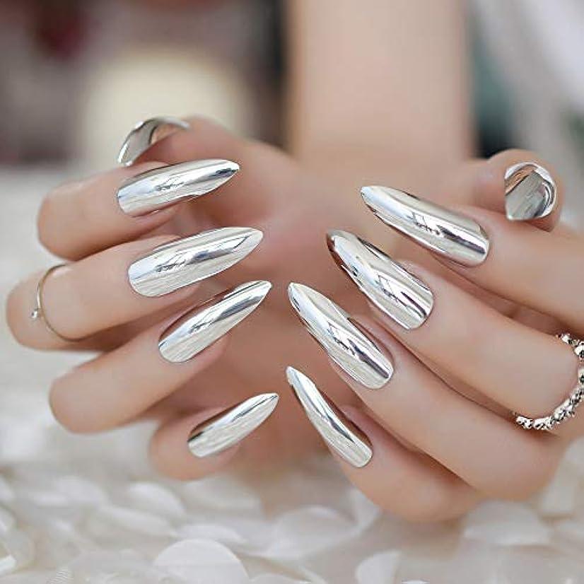 蚊ポルティコ苦悩XUTXZKA 24本の金属の長い銀製の釘の女性方法人工的な偽の釘