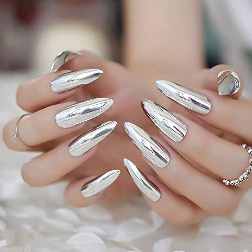 歌詞ショッキングラフレシアアルノルディXUTXZKA 24本の金属の長い銀製の釘の女性方法人工的な偽の釘