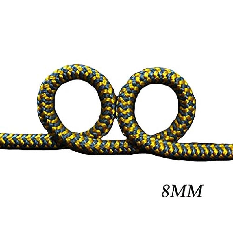 自治どのくらいの頻度で抽象化ロープ(張り綱) スタティックロープ高山登山トレーニング昇降特殊ロープ高温抵抗木登山ロープ木工結び目ロープΦ8mm(0.31in) (Color : 15m(49.2ft))