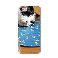 スマホ スマートフォン スマホハード型ケース にゃんこ写真 【141_三毛猫フォト AQUOS Compact SH-02H】