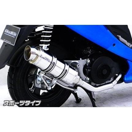 ウイルズウィン(WirusWin) ロイヤルマフラー スポーツタイプ ステンレス GSR125
