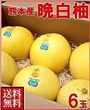 南国フルーツ 熊本県 八代産 晩白柚(ばんぺいゆ)6玉