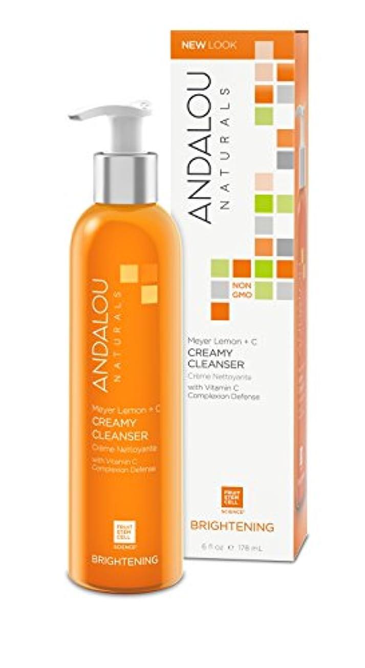シールド実行可能シーボードオーガニック ボタニカル 洗浄料 洗顔料 洗顔ジェル ナチュラル フルーツ幹細胞 「 ML クリーミークレンザー 」 ANDALOU naturals アンダルー ナチュラルズ