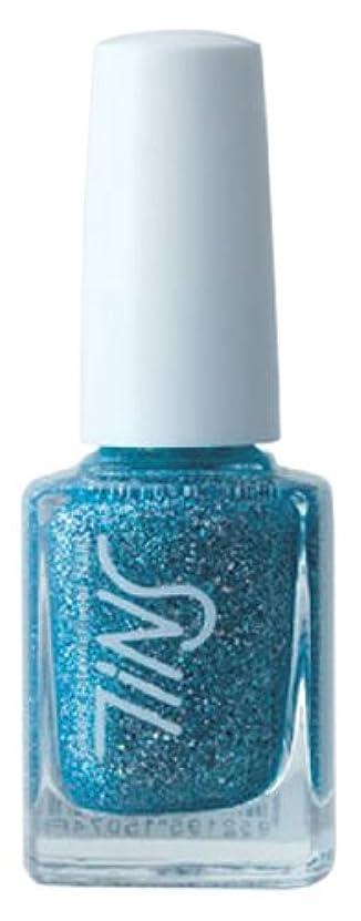 ぎこちないデジタル担当者TINS カラー005(the aquamarine)  11ml