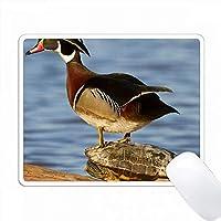 ウッドダックは湿地の赤毛のスライダーに立っています。マリオン社 PC Mouse Pad パソコン マウスパッド