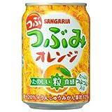 つぶみオレンジ 280g ×24本