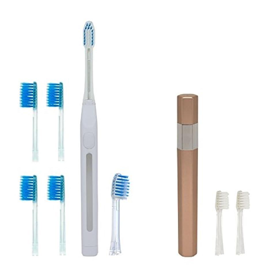 データベース伝染性の絶滅したキスユー イオン 音波電動歯ブラシ イオンパ home