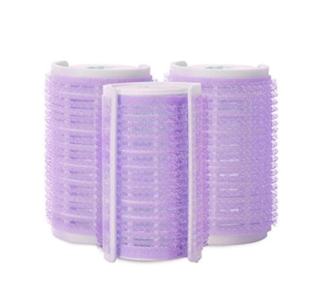 必需品クスコ幻想プラスチック製のDIYグリップ粘着ヘアローラーカーラーヘアドレス、3ピース-W2