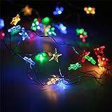 LZEイルミネーションライト ストリングライト 3メートル LED電球 電池式 LED ライト リモコン付き 室外 装飾 結婚式 パーティー 飾り ライト 正月 クリスマス 飾り バレンタインデー 装飾 多色
