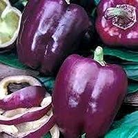 種子パッケージ: 3:2017新しい100個の種子/ホームガーデン3のホット盆栽チリペッパーシードオーガニック野菜の種パック