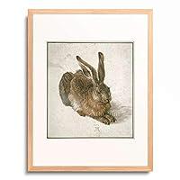 アルブレヒト・デューラー Albrecht Durer 「Young hare」 額装アート作品