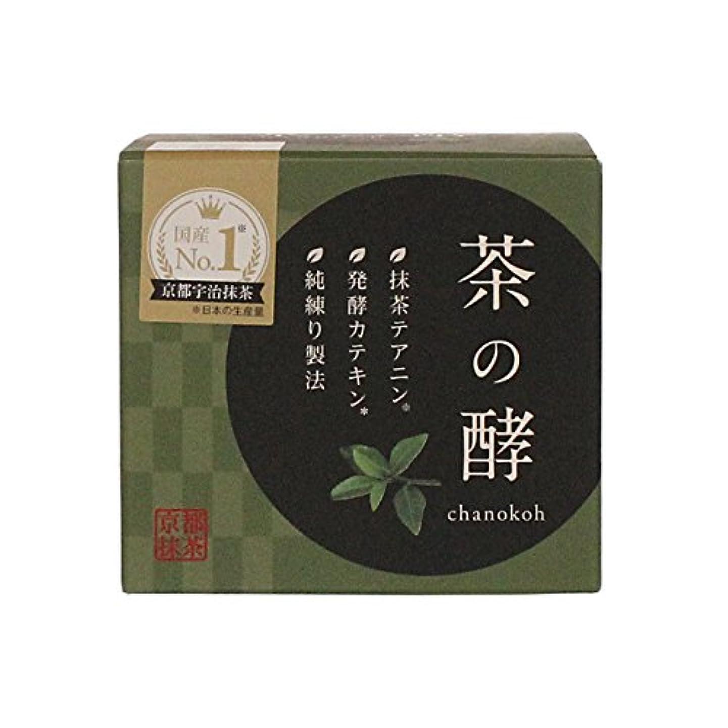 無駄な悲観的思い出させる伸和製薬 茶の酵 100g