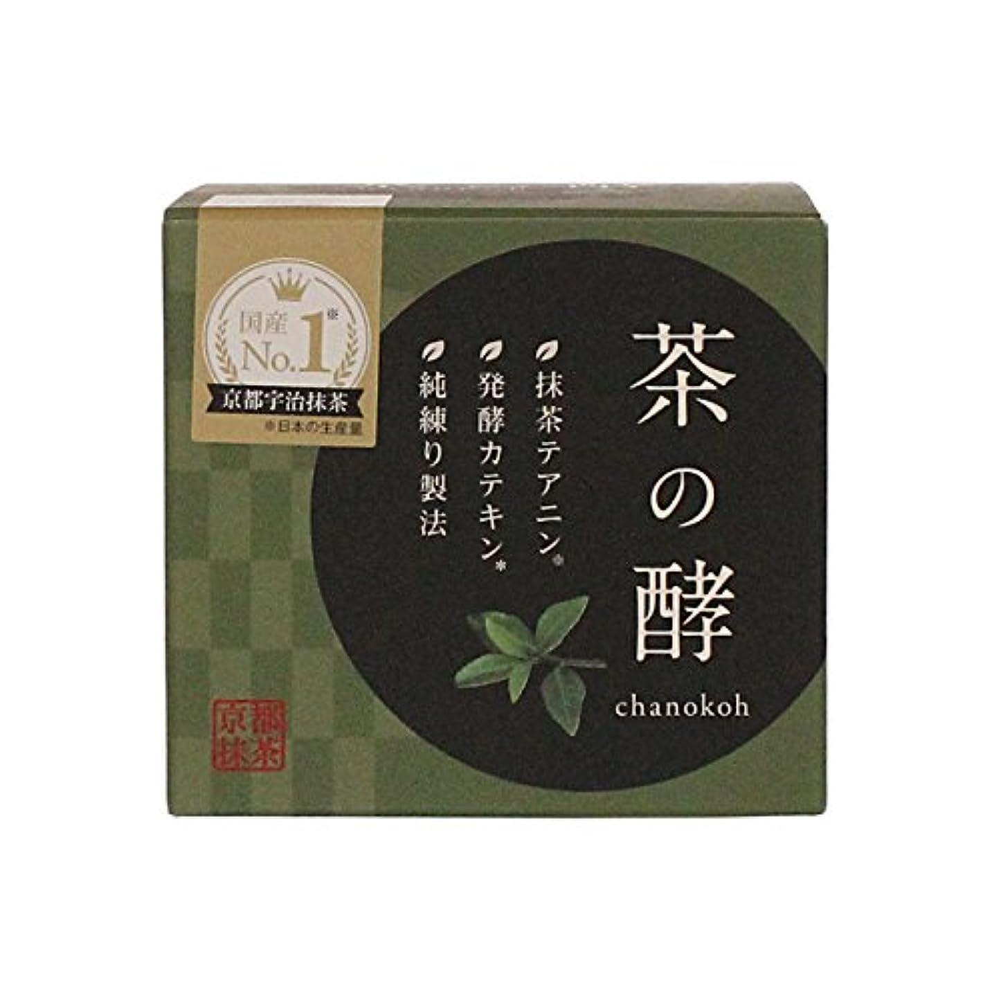 メカニックくぼみ別々に伸和製薬 茶の酵 100g
