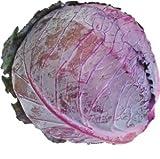 レッドキャベツ(紫キャベツ・赤キャベツ・きゃべつ) 1玉 【鹿児島・熊本・佐賀・長野・岡山産】 サラダに入れると彩よく綺麗ですね。