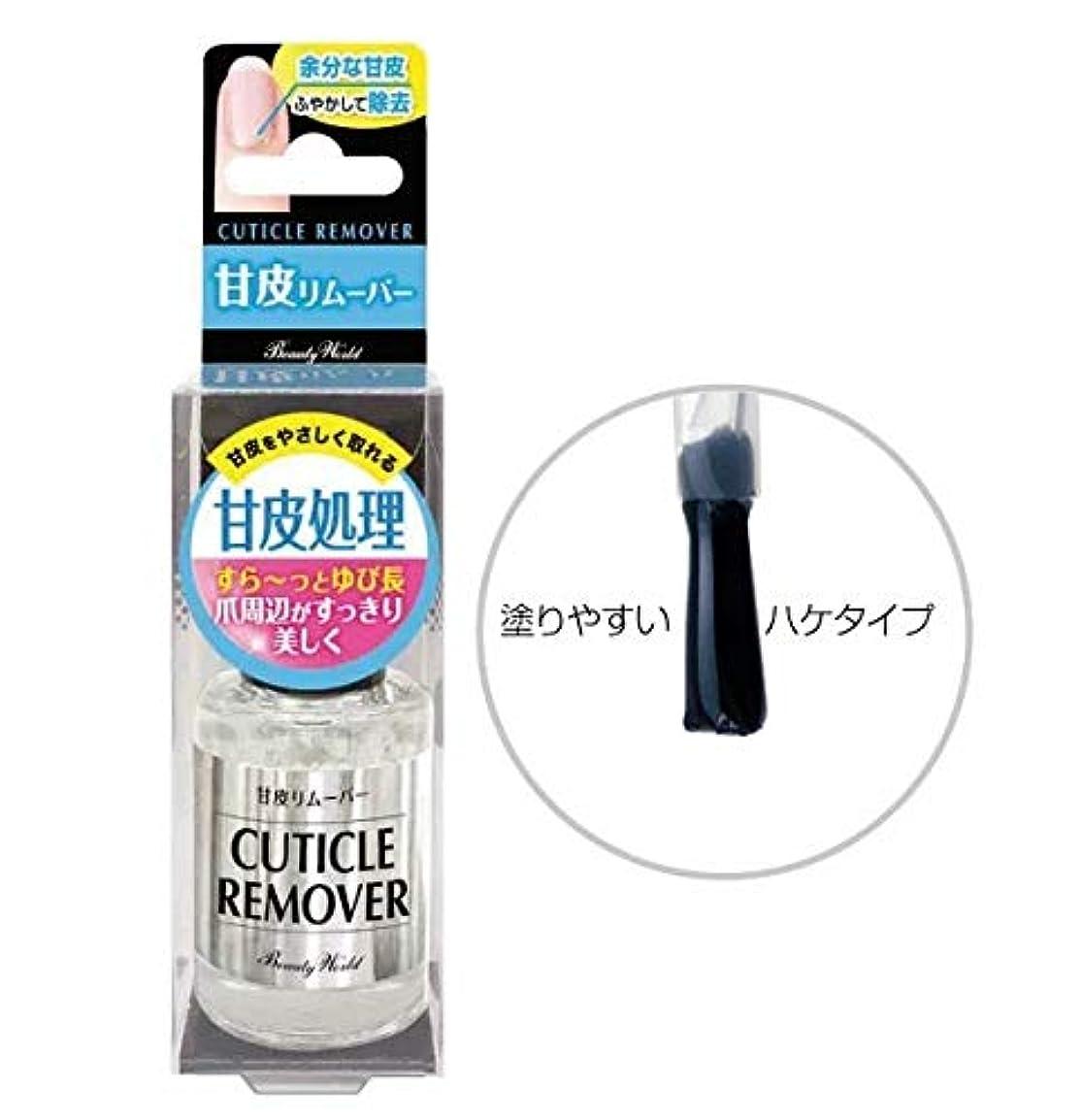集中はず期間BW LT甘皮リムーバー 10ml AMR581 美容 ネイル 爪 甘皮 ケア 除去 ささくれ 指先 綺麗 ハケタイプ マニキュア ビューティーワールド