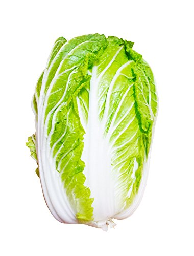 国内産 白菜 約5キロ