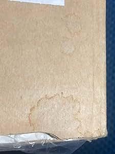 SANYO 米粉ベーカリー ホワイト SPM-KP100(W)