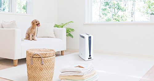 【カラリと】人気のデシカント式除湿機のおすすめランキング10選