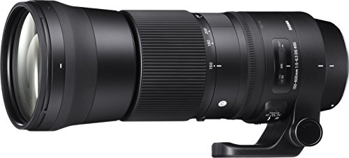 SIGMA 150-600mm F5-6.3 DG OS HSM | Contemporary C015 | Canon EFマウント | Full-Size/Large-Format