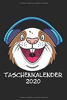 Taschenkalender 2020: Taschenkalender fuer Sept. 2019 bis Dezember 2020 A5 Terminplaner Wochenplaner Terminkalender Wochenkalender Organizer mit Meerschweinchen Hamster Nagetier Geschenk