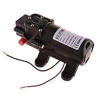 F Fityle 4.0L / Min 電気水ポンプ マイクロ 高圧スプレーヤー ダイヤフラムポンプ 低消費電力 全2種 - 24Vダブルホース
