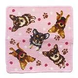 (アーンジョー)Enjeau 「チワワ」 日本製 ハンカチ タオル 23cm シェニール織 綿100% ギフト対応可