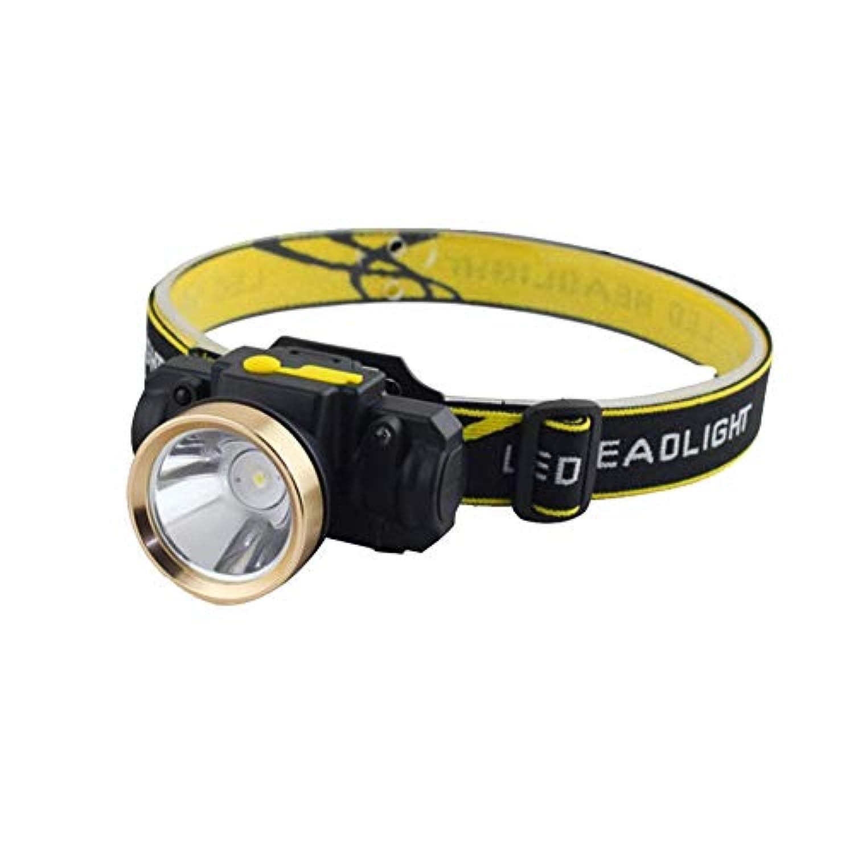 実質的プライム確認するSnner USB充電式 ヘッドライト LED ヘッドランプ センサー式 防水 防塵 調整可能 夜釣り 屋外作業 小型 軽量 登山用